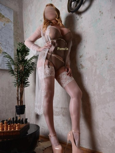 Escorte Chic Pamela dans Bruxelles - Photo: 1